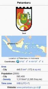 Geografis Kota Pekanbaru